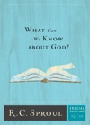 What Can We Know About God