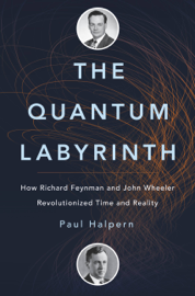 The Quantum Labyrinth book