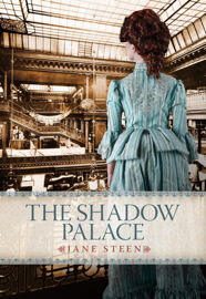 The Shadow Palace book