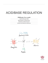 ACID/BASE REGULATION