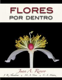 Flores Por Dentro book