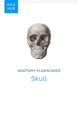 Anatomy flashcards: Skull - Kenhub book