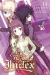 A Certain Magical Index Vol 14 Light Novel