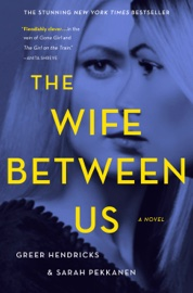 The Wife Between Us book summary