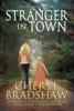Cheryl Bradshaw - Stranger in Town  artwork