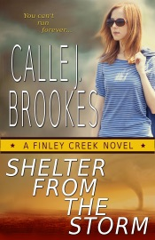 Shelter from the Storm PDF Download