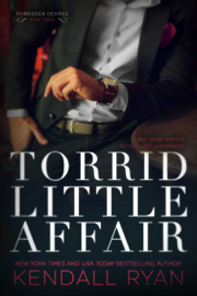Torrid Little Affair book