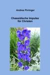 Chassidische Impulse Fr Christen
