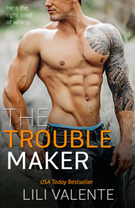 The Troublemaker Summary