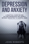 Depression And Anxiety A Practical Guide On How To Cure Depression And Anxiety Without Resorting To Harmful Meds