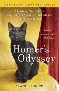 Homer's Odyssey ebook