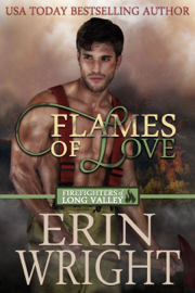 Flames of Love - Erin Wright book summary