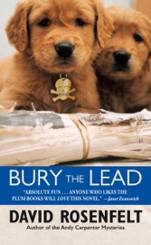 Bury the Lead PDF Download