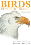 Birds Of Prey Of The East
