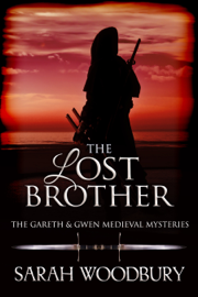 The Lost Brother book