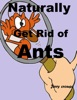Naturally Get Rid of Ants