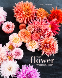 The Flower Workshop Book Cover