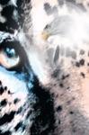 Cuauhtmoc Descendant Of The Jaguar