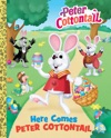 Here Comes Peter Cottontail Big Golden Book Peter Cottontail