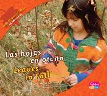 Las Hojas En Otoño/Leaves In Fall