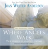 Where Angels Walk (25th Anniversary Edition)