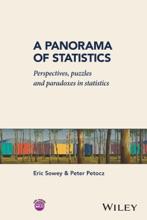 A Panorama Of Statistics