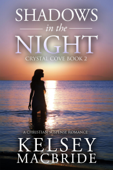 Shadows in the Night: A Christian Suspense Romance Novel