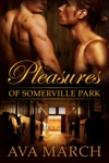 Pleasures Of Somerville Park