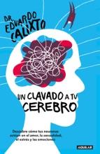 Un Clavado A Tu Cerebro
