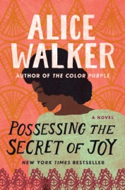 Possessing the Secret of Joy PDF Download