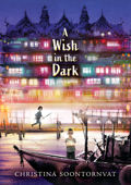 A Wish in the Dark Book Cover