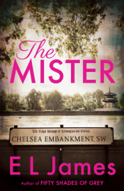 The Mister book summary