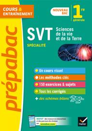 SVT 1re (spécialité) - Prépabac Cours & entraînement