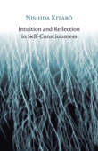 Intuition and Reflection in Self-Consciousness Book Cover