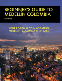 Beginner's Guide to Medellin Colombia