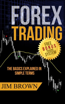 Forex Trading - The Basics Explained in Simple Terms