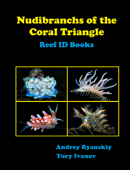 Nudibranchs of the Coral Triangle