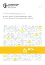 Good Beekeeping Practices: Practical Manual on How to Identify and Control the Main Diseases of the Honeybee (Apis Mellifera)