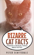Bizarre Cat Facts: Strange & Unusual Things About Kitties