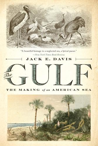 The Gulf: The Making of An American Sea - Jack E. Davis - Jack E. Davis