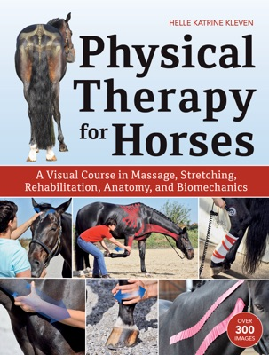 Physical Therapy for Horses