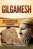 Gilgamesh: Una Fascinante Guía de la Epopeya del rey Gilgamesh