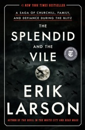 Download The Splendid and the Vile