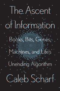 The Ascent of Information Book Cover