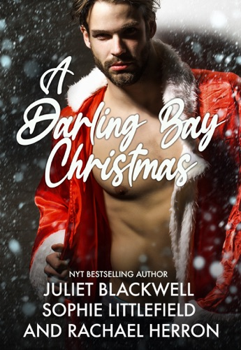 A Darling Bay Christmas: Three Heartwarming Holiday Short Stories E-Book Download