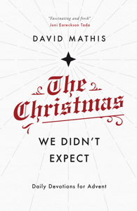 The Christmas We Didn't Expect Book Cover