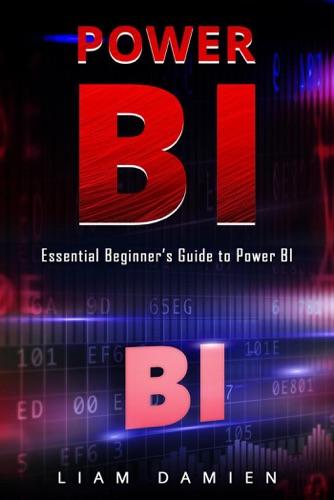 Power Bi: Essential Beginner's Guide to Power BI