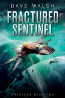 Dave Walsh - Fractured Sentinel artwork