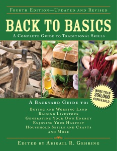 Back to Basics Book Cover