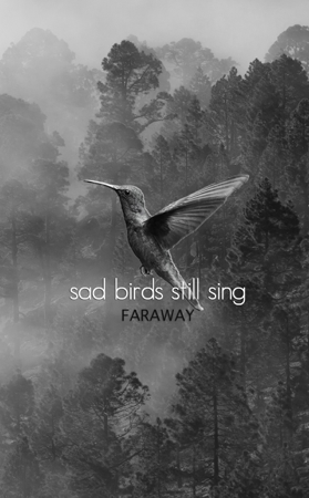 Sad Birds Still Sing - Faraway Poetry